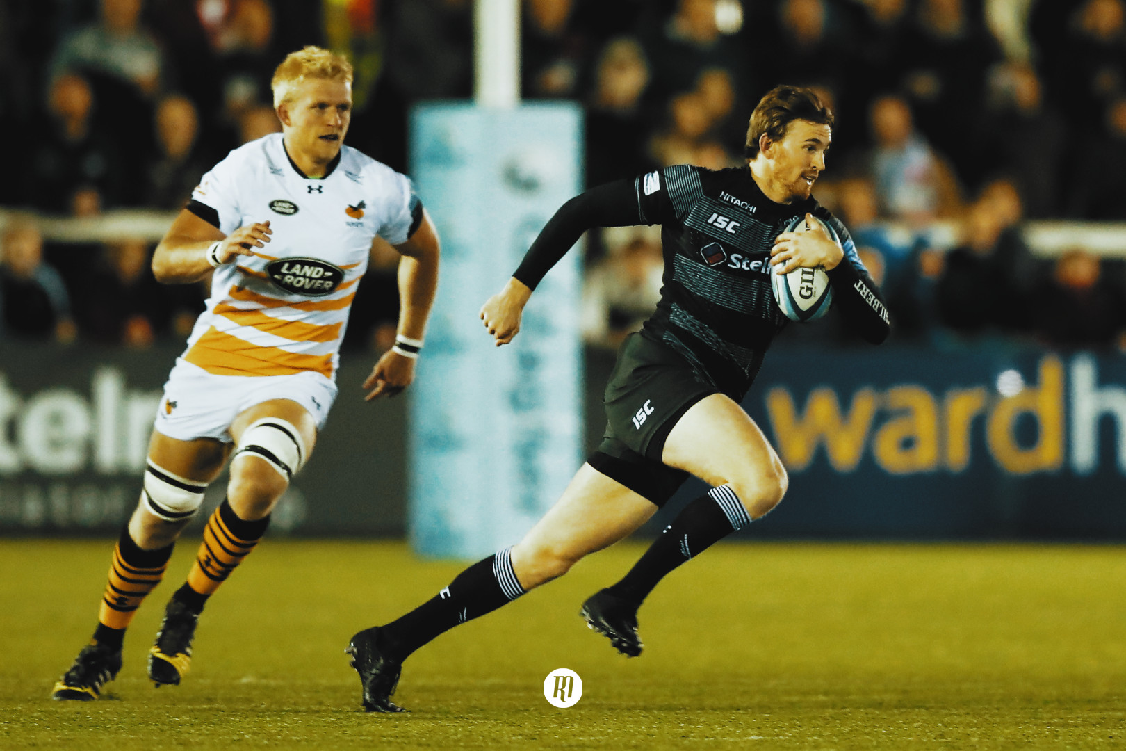 Hammersley signing could complete Sale Sharks' charge to the top